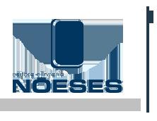 logo-noeses