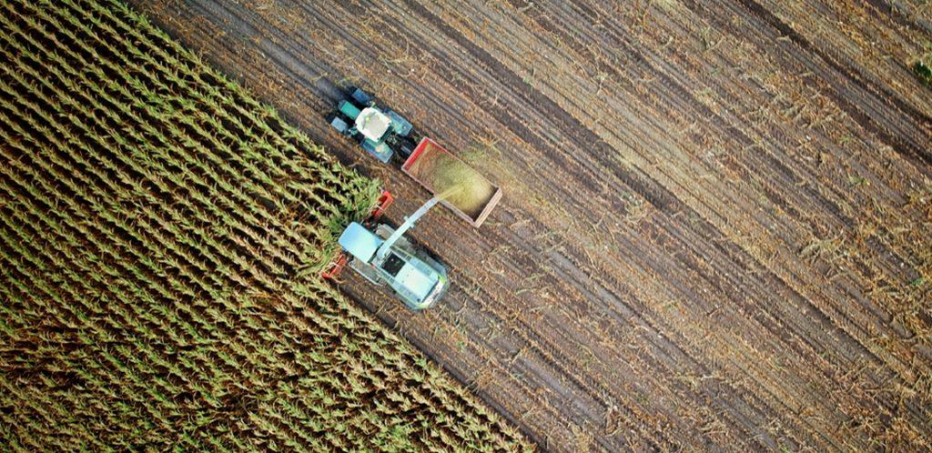 Curso de tributação no agronegócio